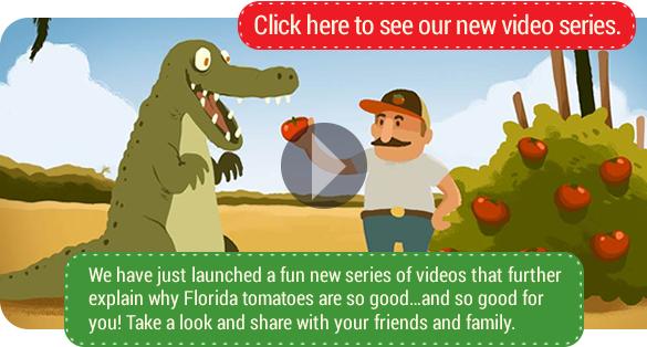alligator-videos